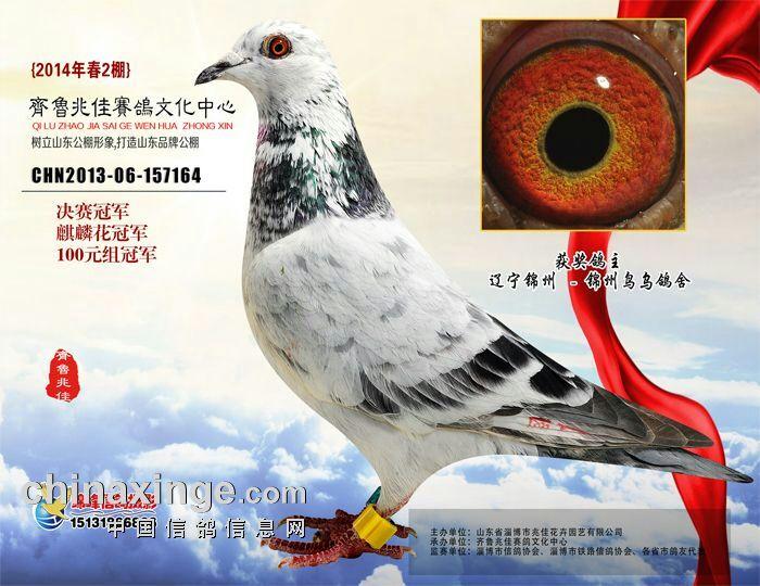 动物麒麟眼睛图片大全大图