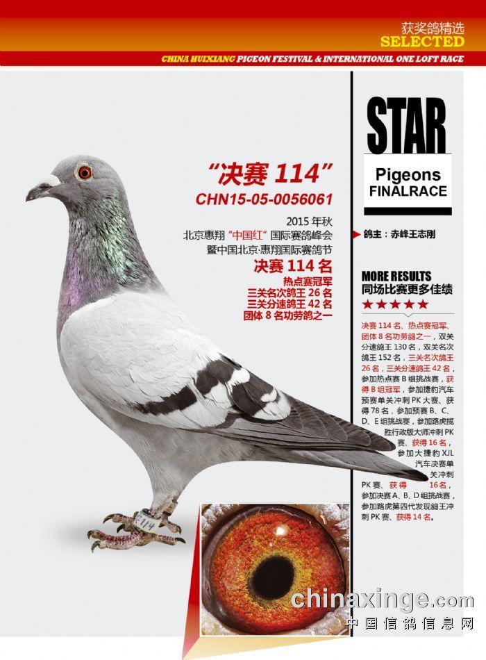 惠翔热点冠军决赛114