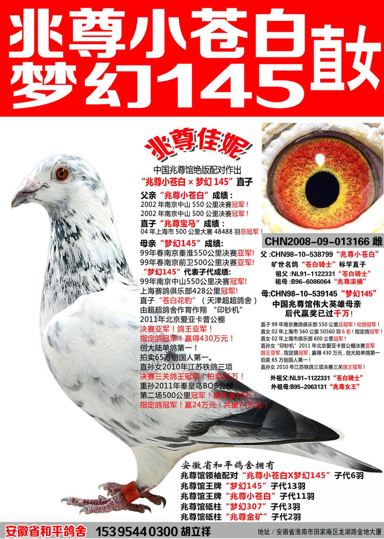 苍白骑士王牌梦幻145直女【兆尊佳妮】
