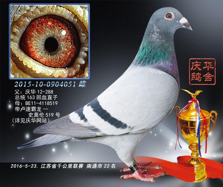 2016江苏省千公里联赛南通市第22名