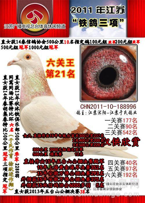 2011江苏广播电视台 6关综合21位
