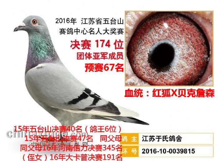 2016五台山决赛174名