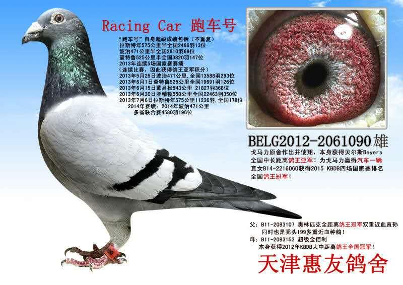 跑车 Racing Car