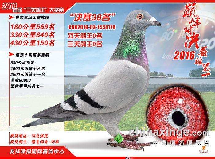 友祥津福公棚决赛38名