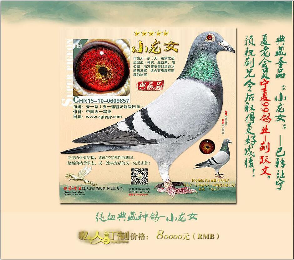 中国天一《小龙女》-典藏圣品