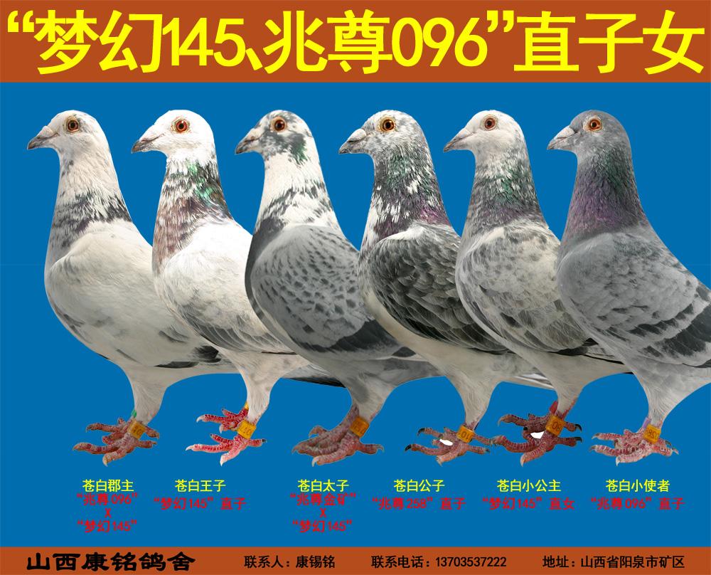 """""""梦幻145""""直子女"""