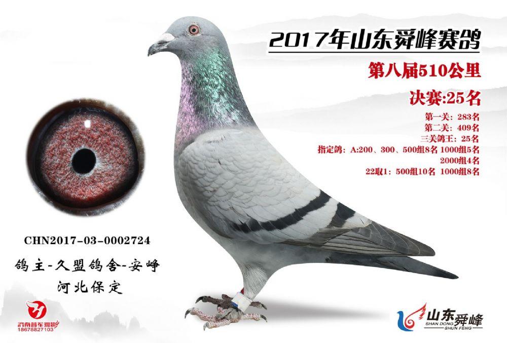 舜峰公棚决赛25名