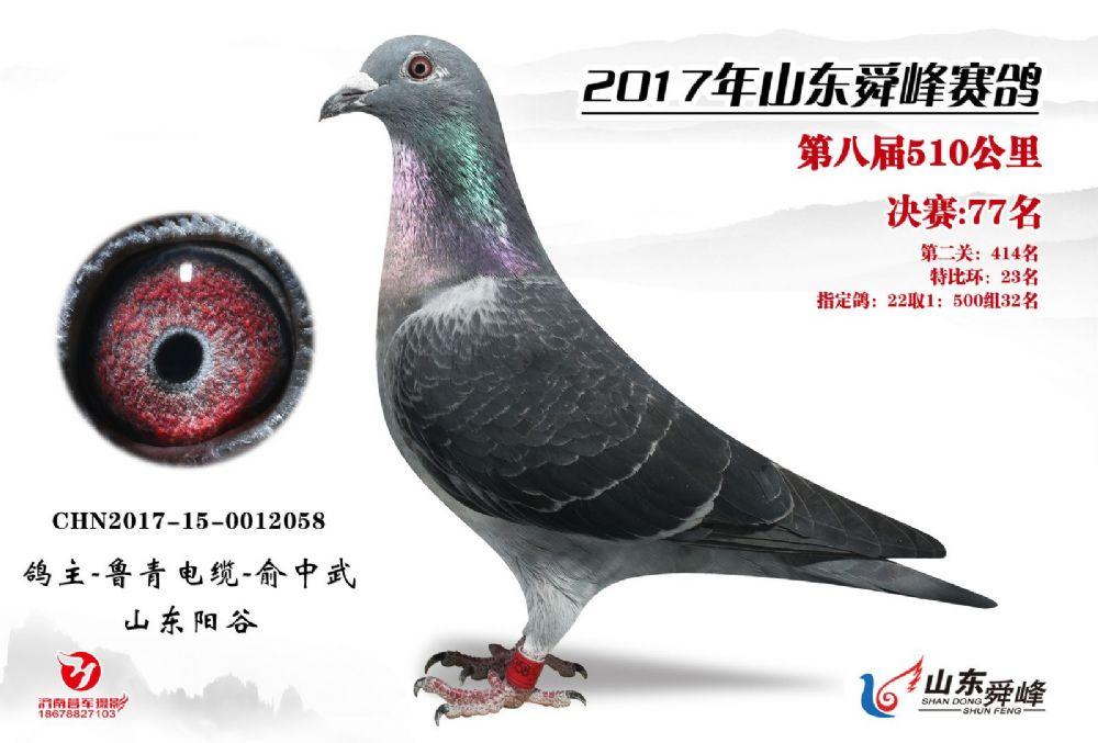 山东舜峰决赛77名、特比23名