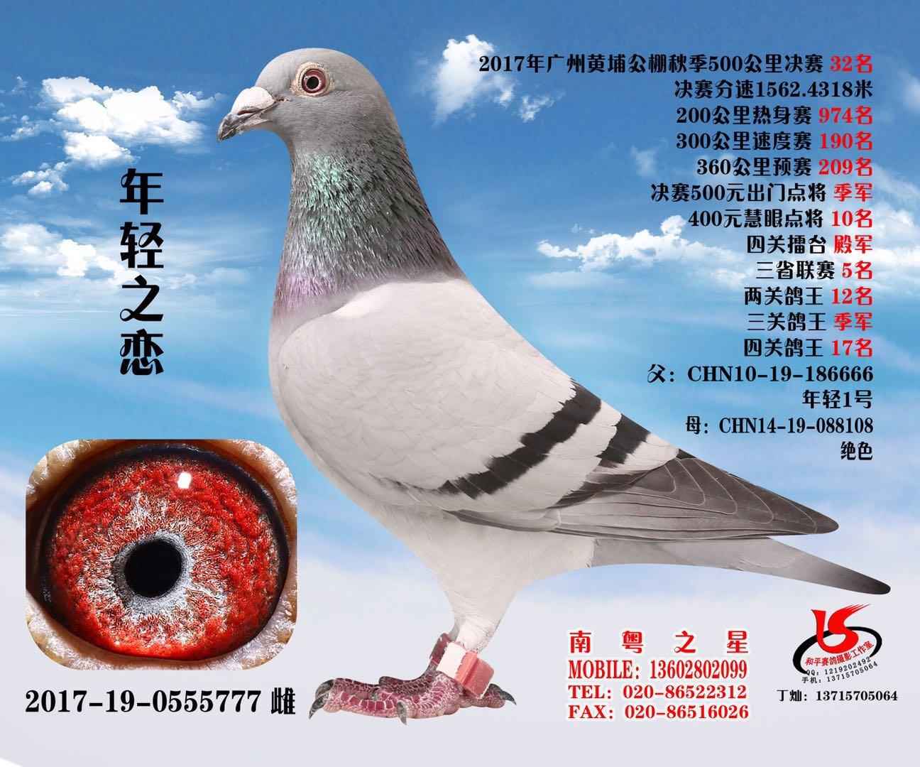 2017浩羽(黄埔)公棚32名