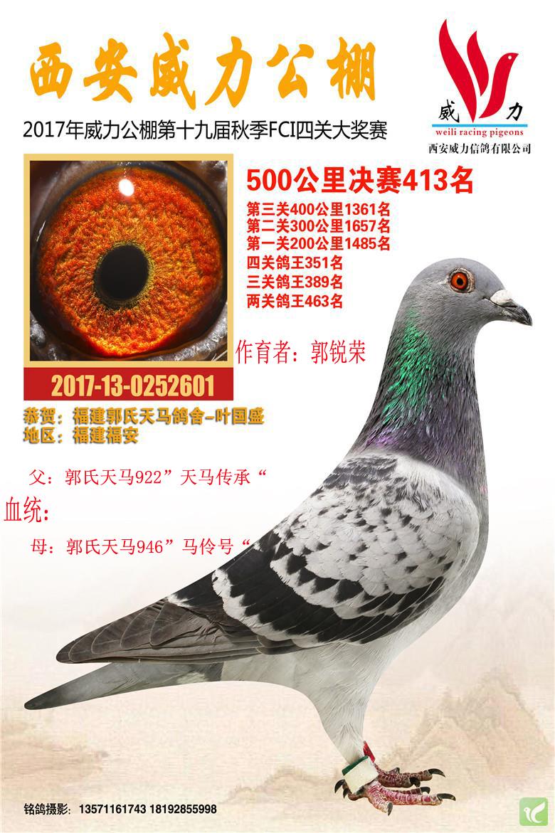 郭氏天马601