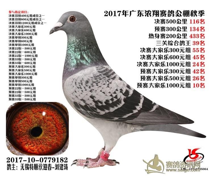 17年秋广东浓翔公棚决赛116名