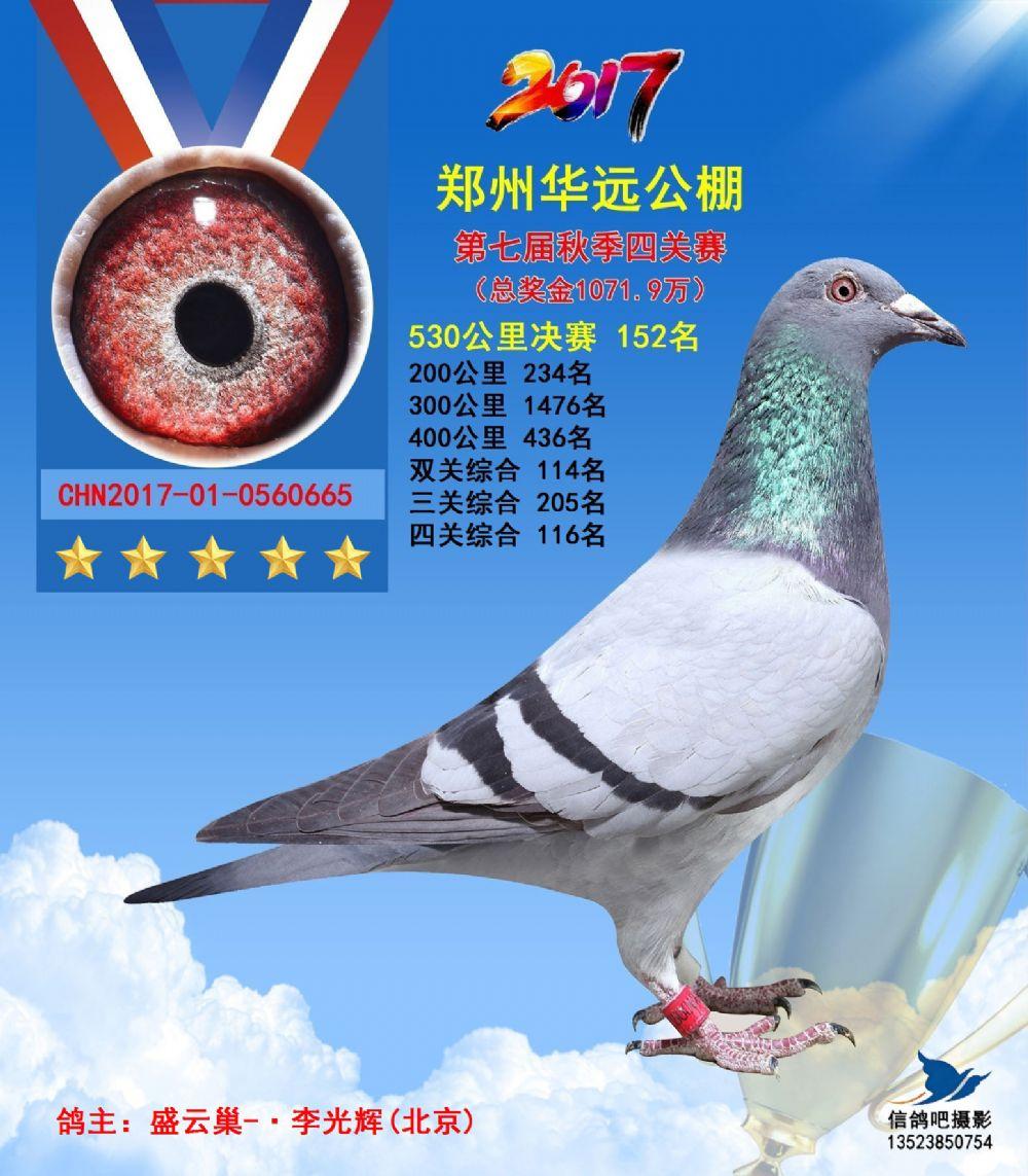 2017年郑州华远152名