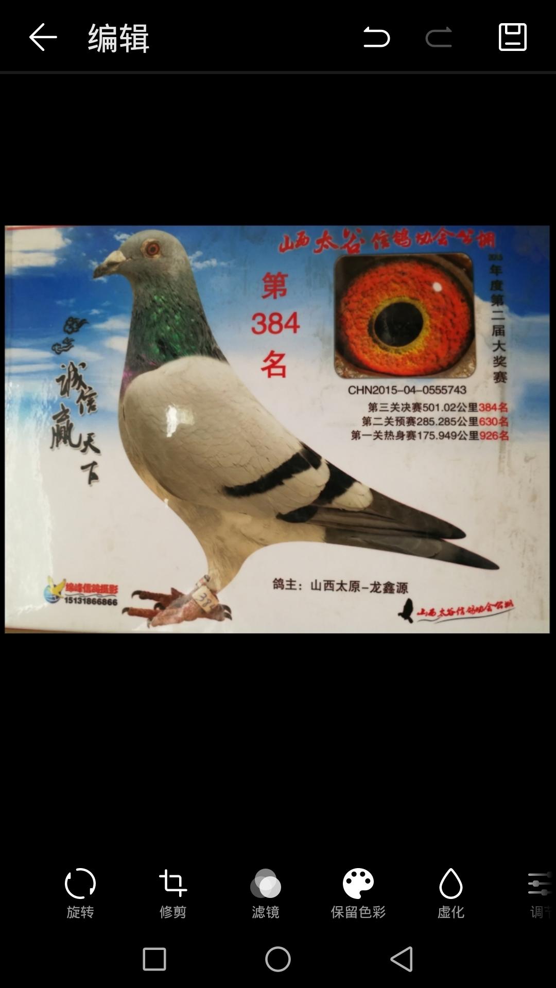 龙鑫743