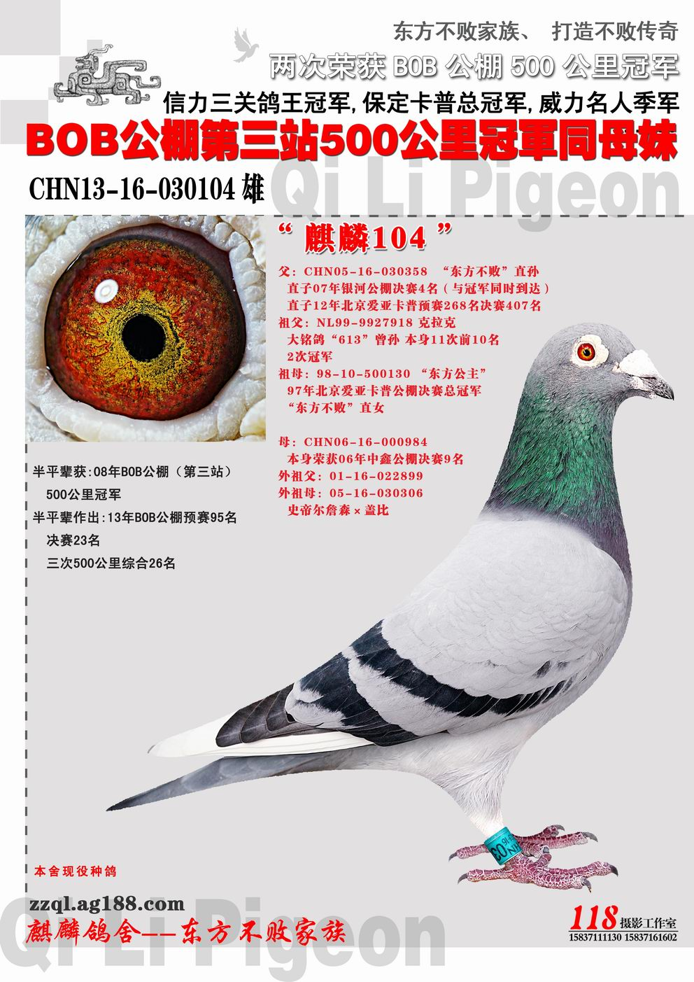 CHN13-16-030104