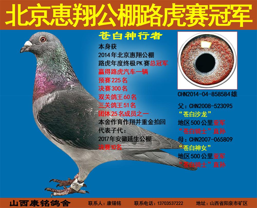 北京惠翔公棚路虎赛总冠军
