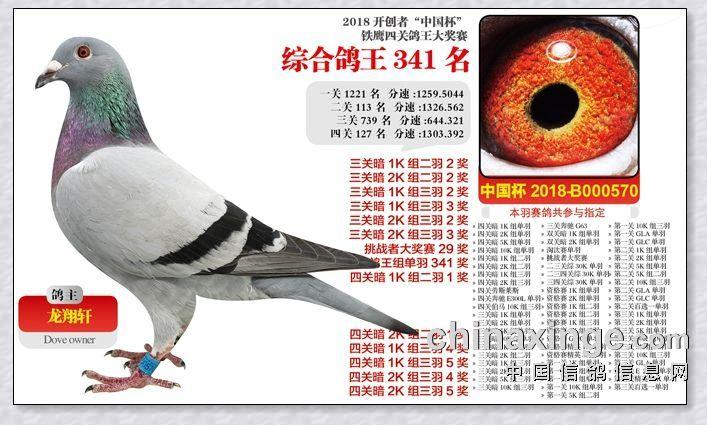 2018-北京开创者.四关综合341名.