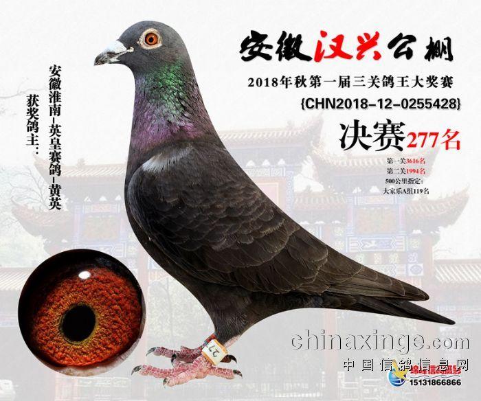 18年安徽汉兴公棚决赛277名