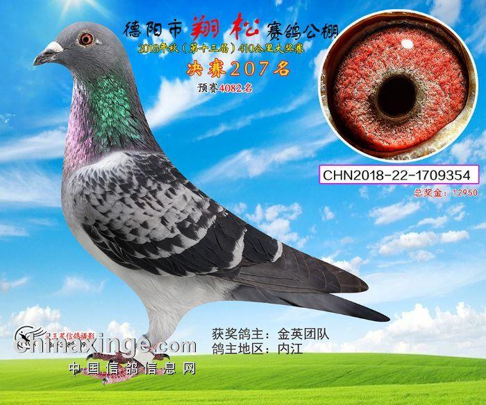 翔松 207