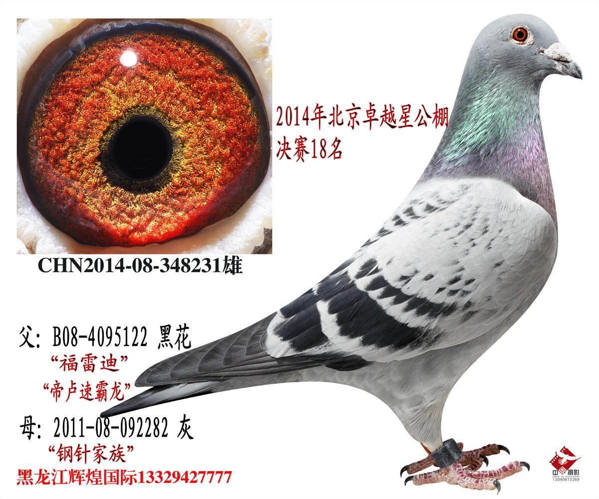 北京卓越星决赛18名