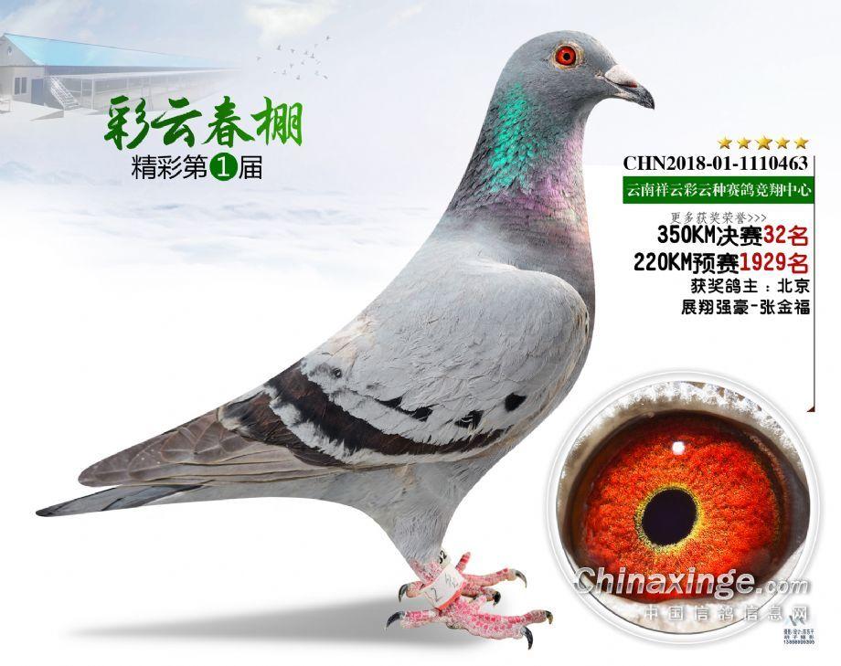 2019年春祥云彩云决赛32名