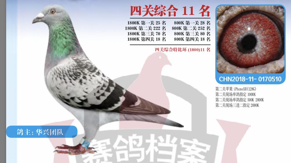 2018龙湾四关综合11名