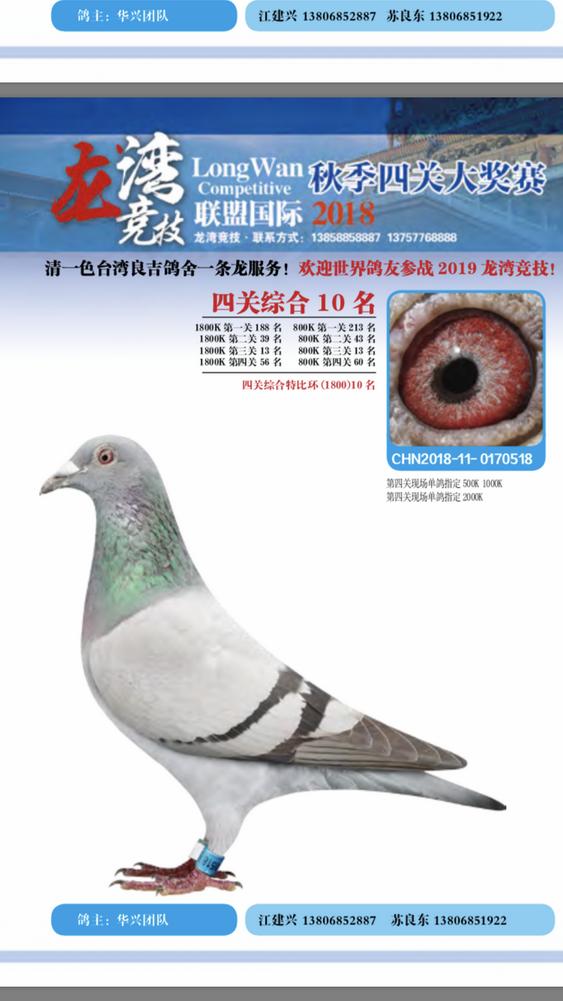 2018龙湾四关综合10名