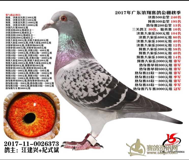 2017浓翔公棚三关综合30名