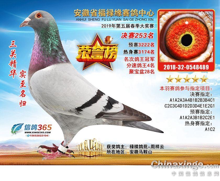 19年春安徽福禄缘公棚决赛253名(售)