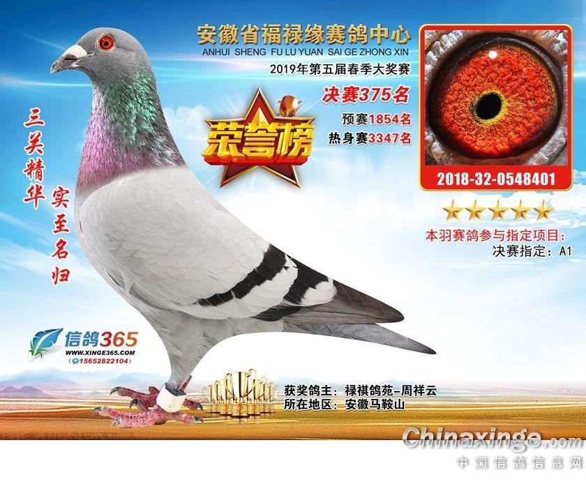 19年春安徽福禄缘公棚决赛375名(售)