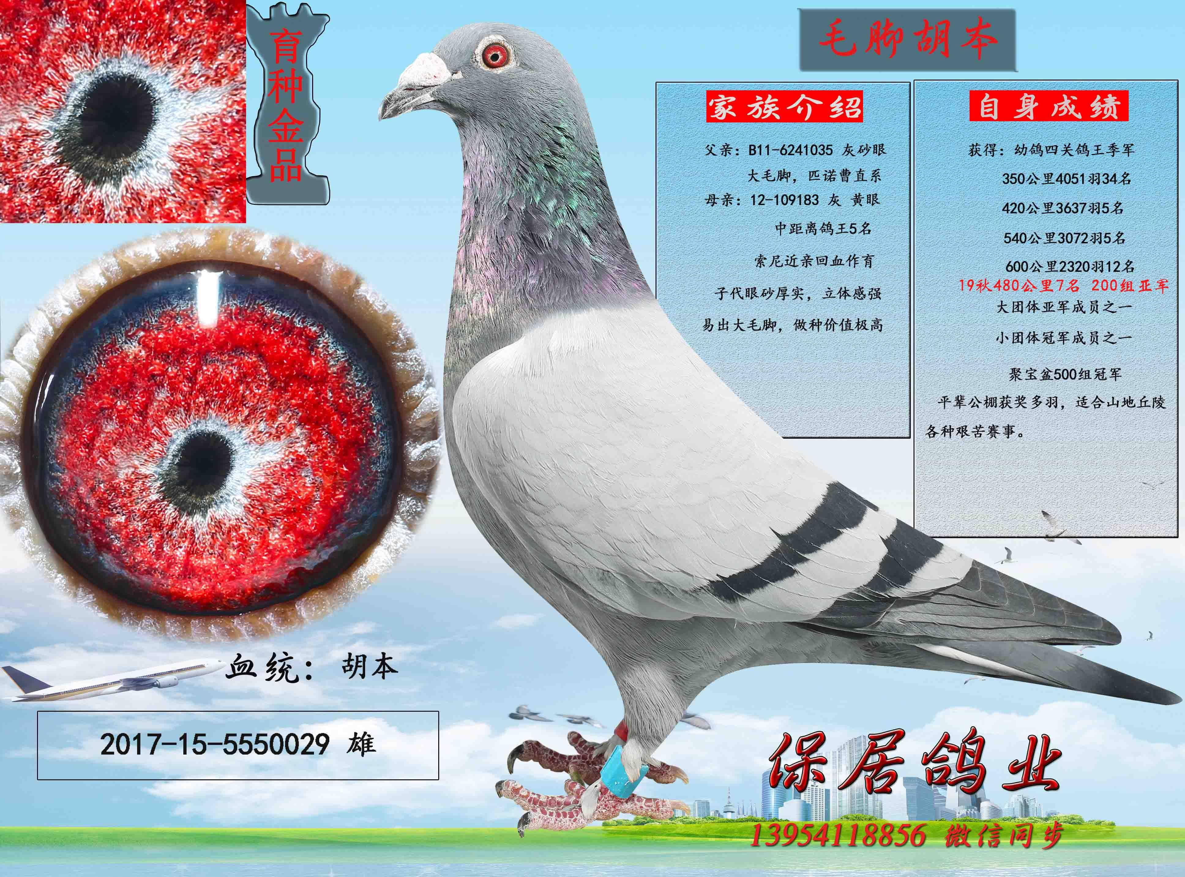 千元包邮专区