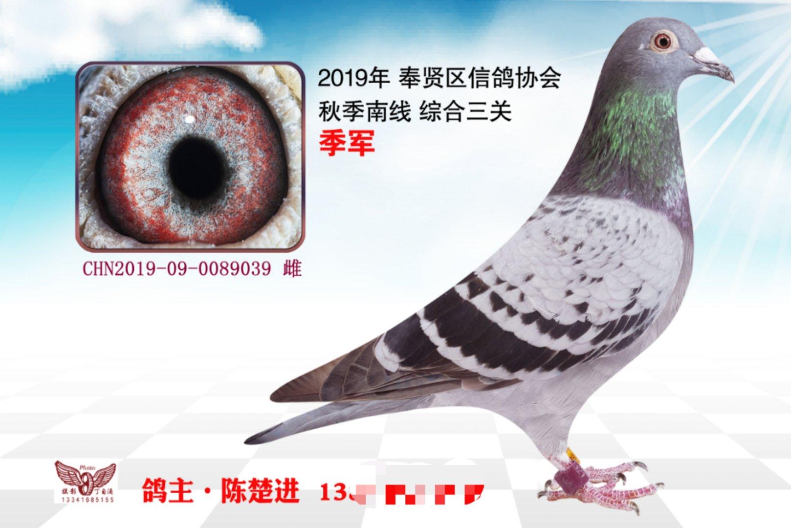 2019秋上海奉贤区南线三关综合季军