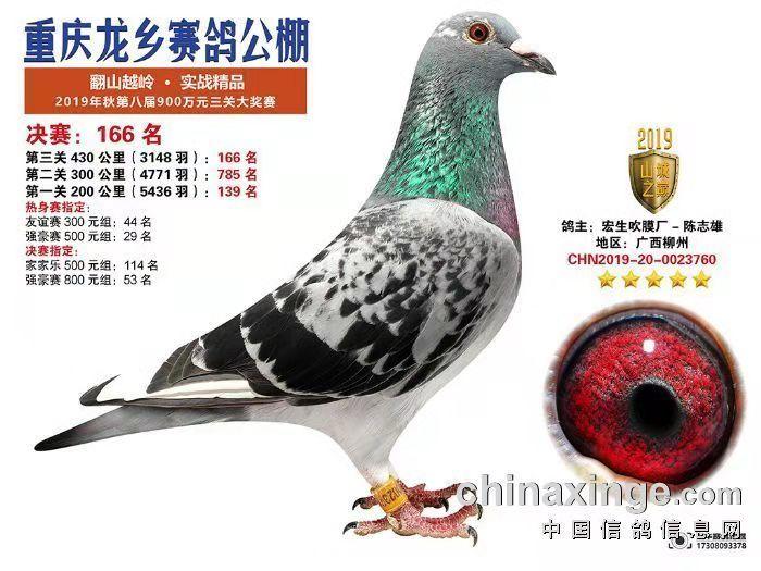CHN2019-20-0023760