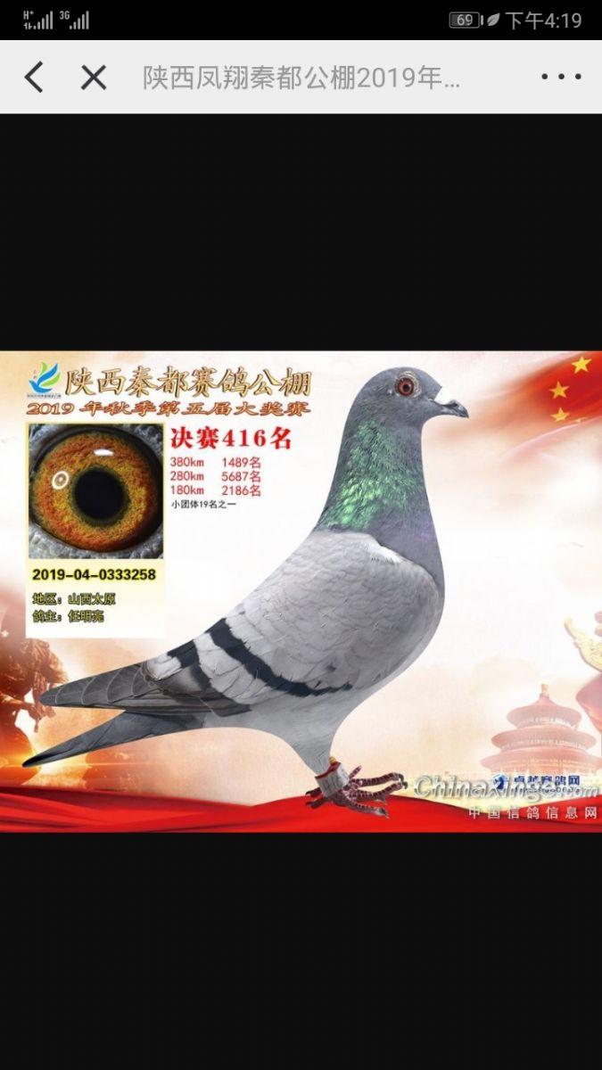 龙鑫258