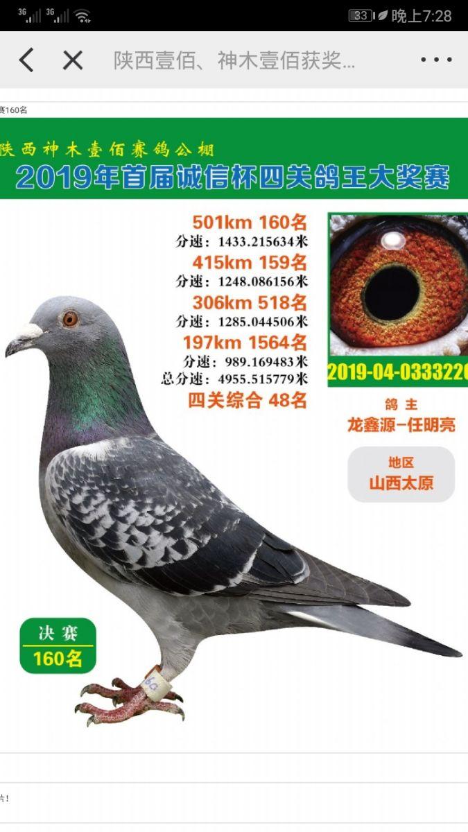 龙鑫220