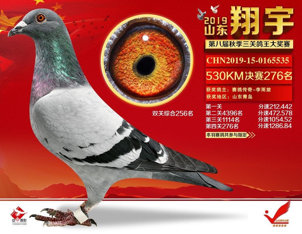 山东翔宇公棚决赛276名