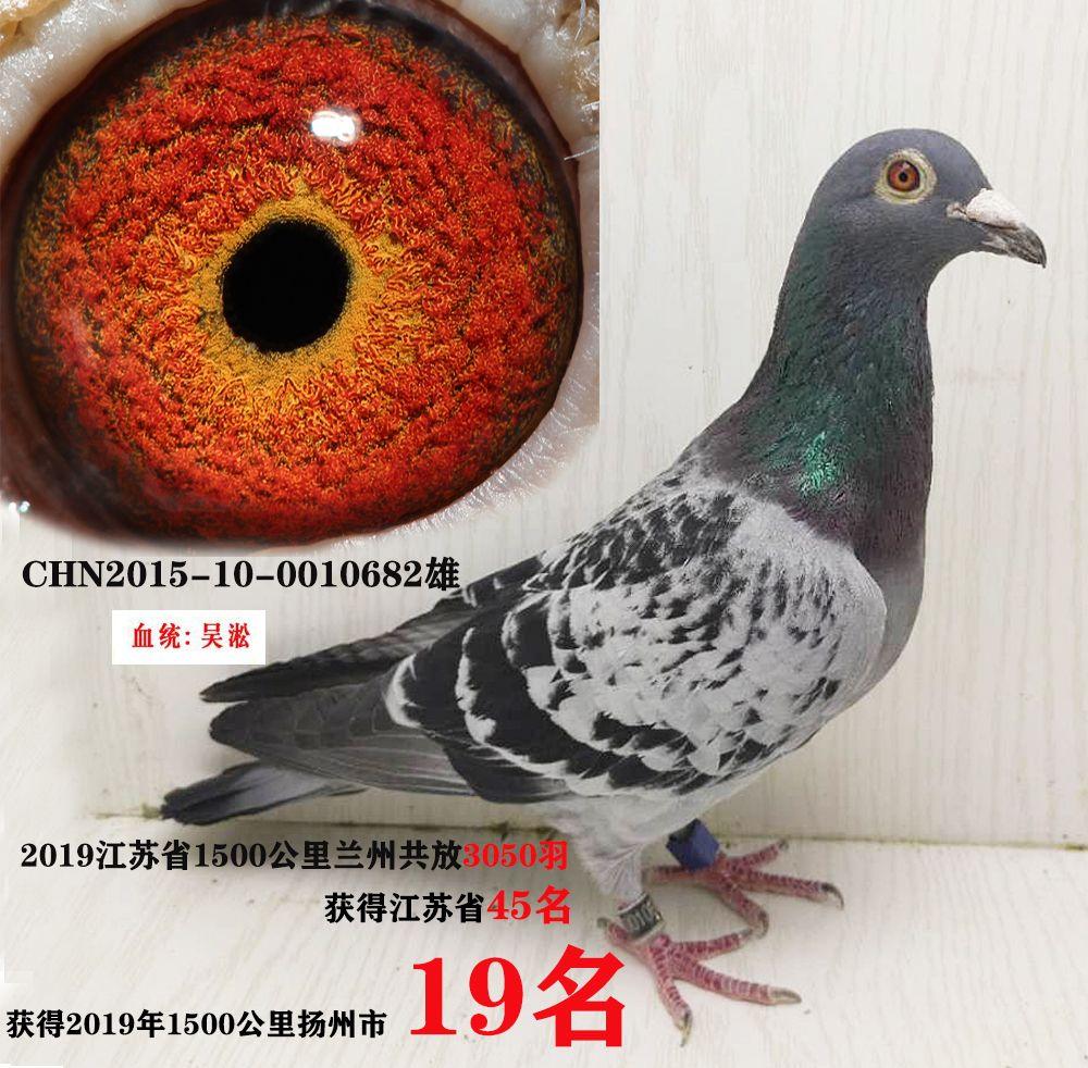 兰州19名吴淞6