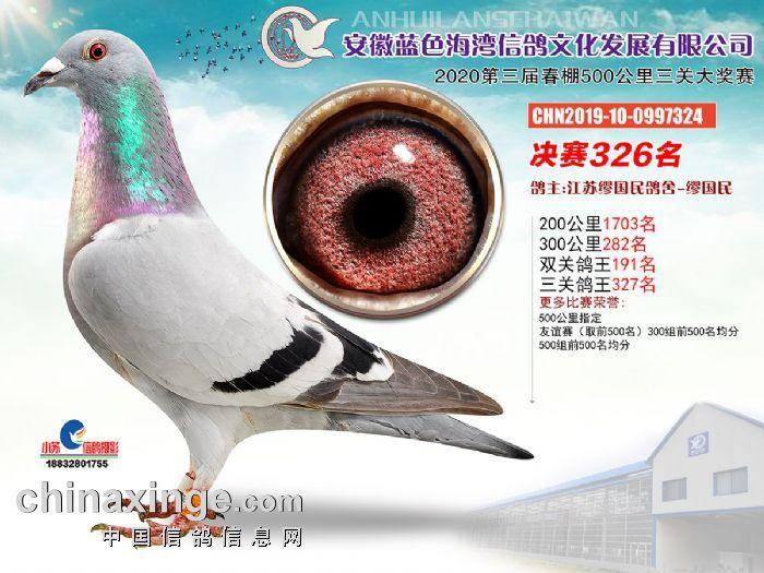 安徽蓝色海湾2020决赛326名