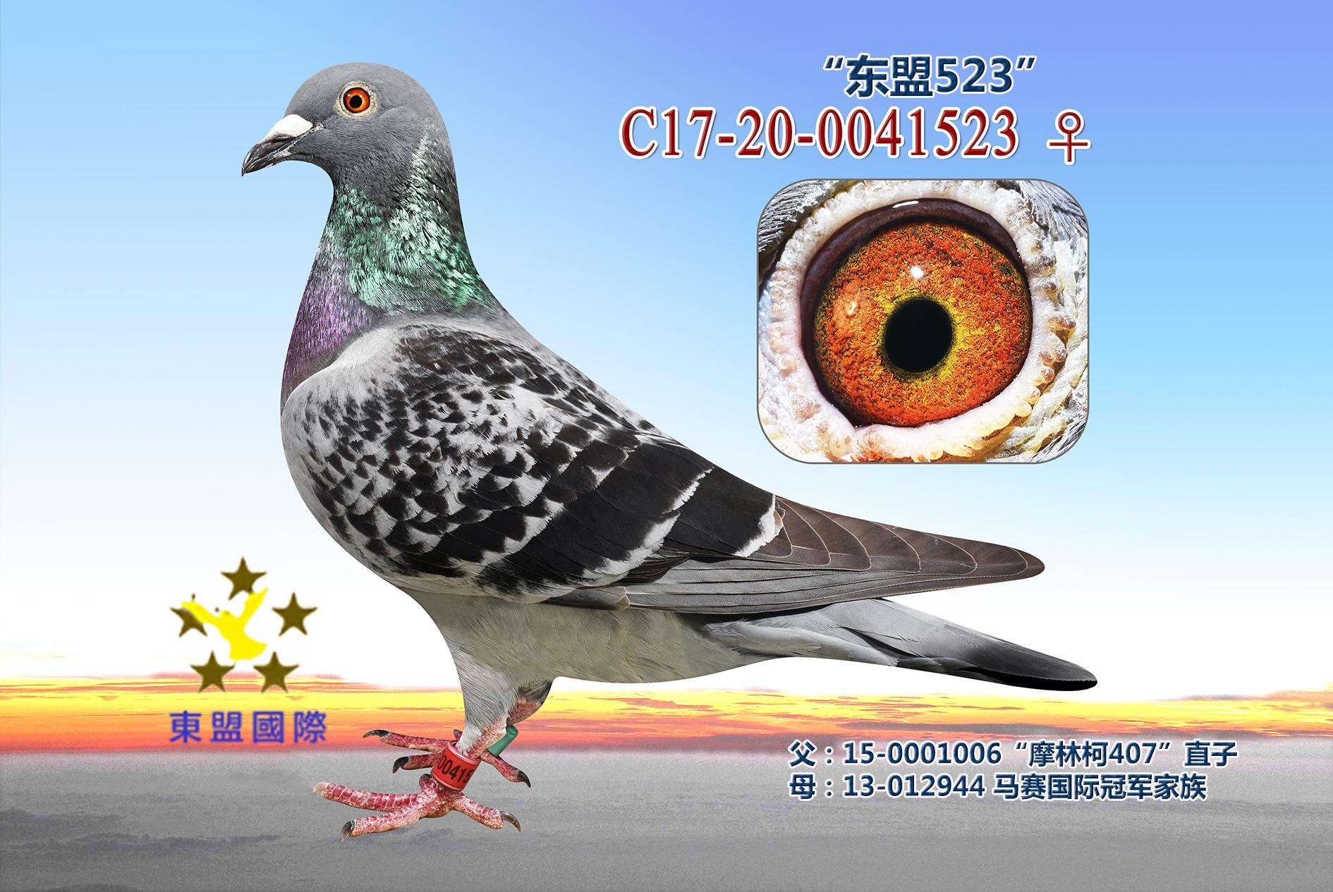 """""""东盟523"""""""