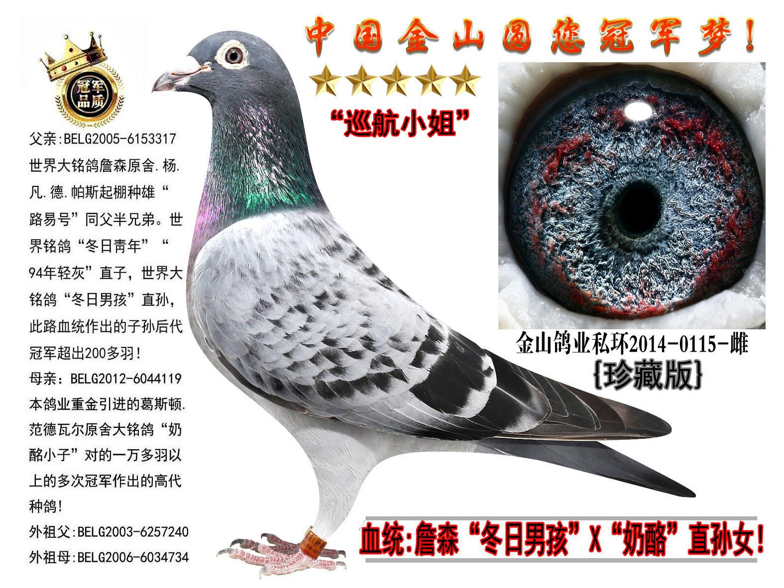 """世界大铭鸽詹森原舍""""冬日男孩""""绝版直女!"""