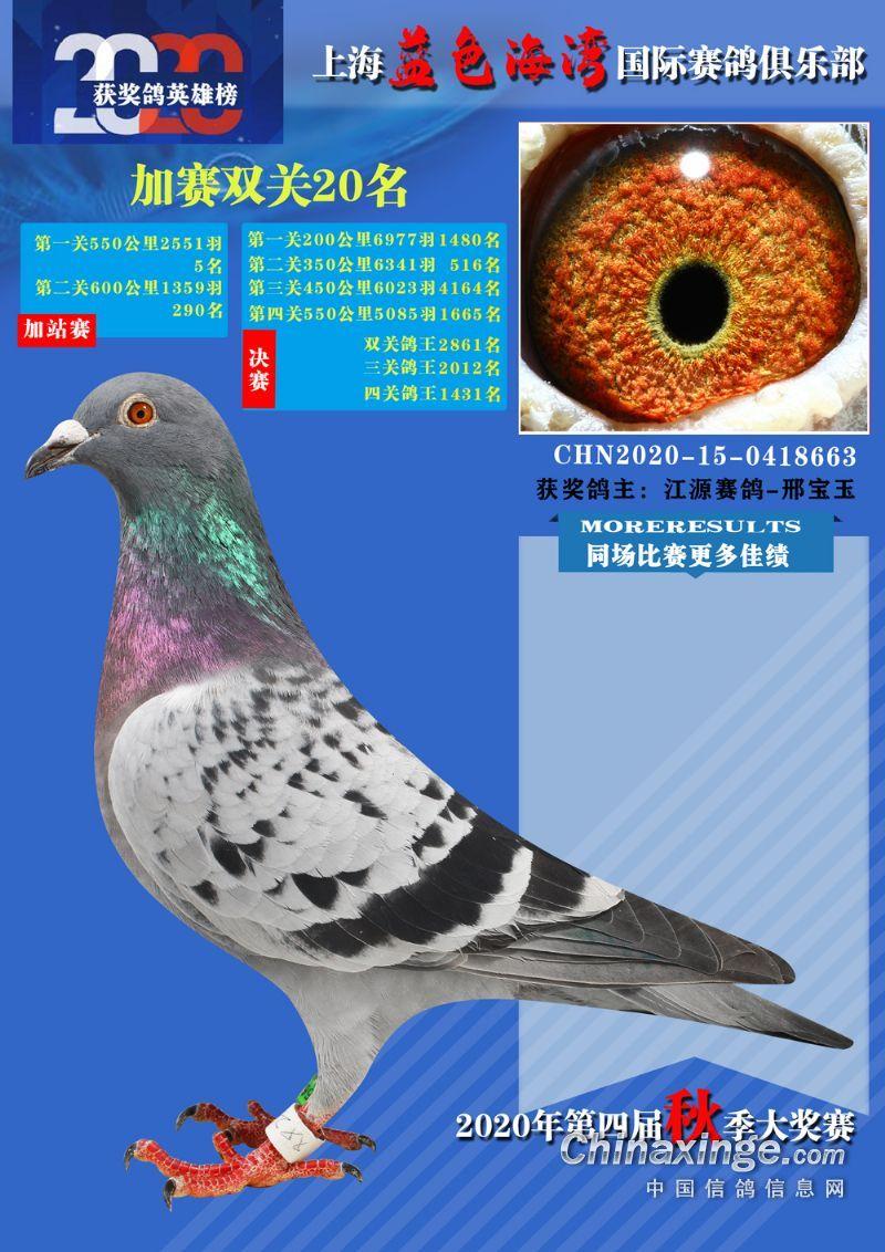 上海蓝色海湾加站双关鸽王20位