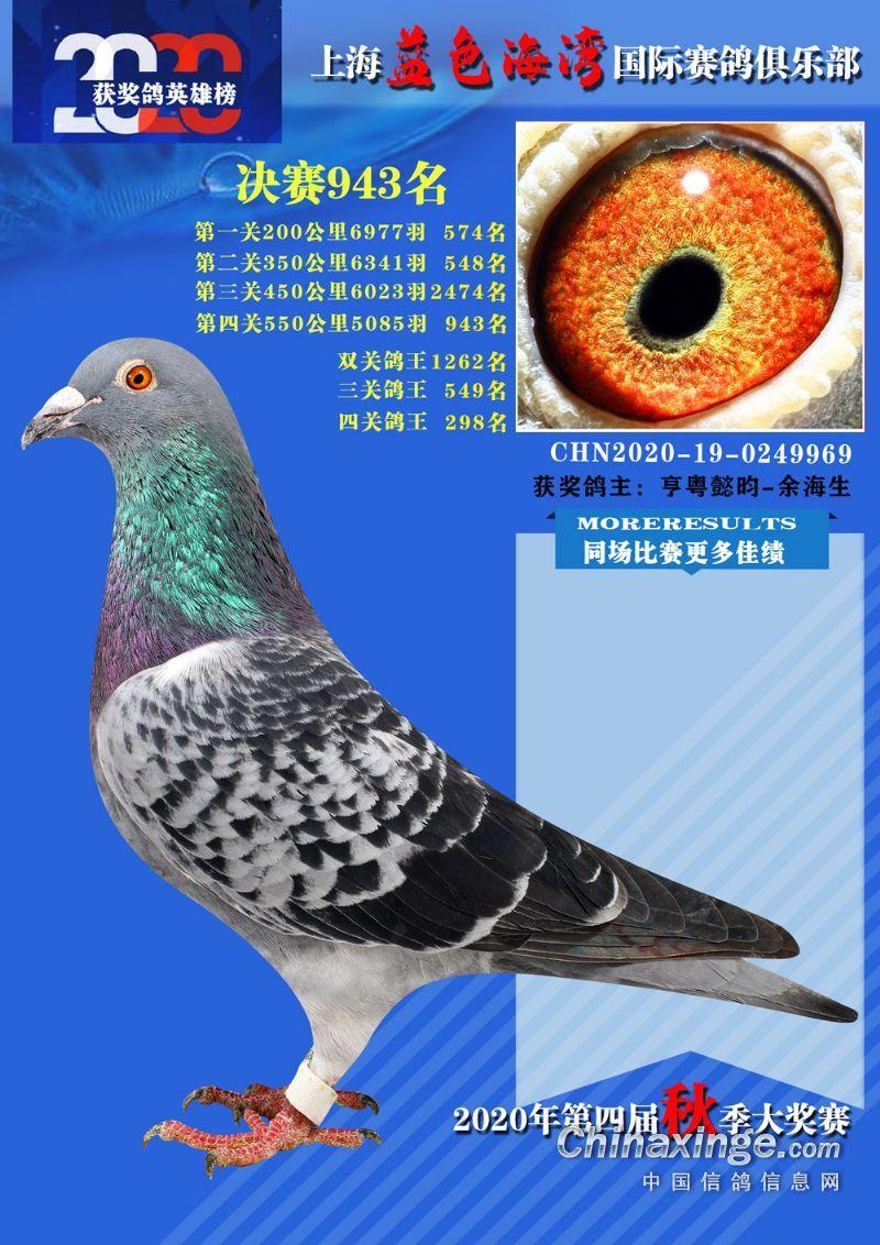 """【蓝湾9969】""""超越号""""外孙!"""