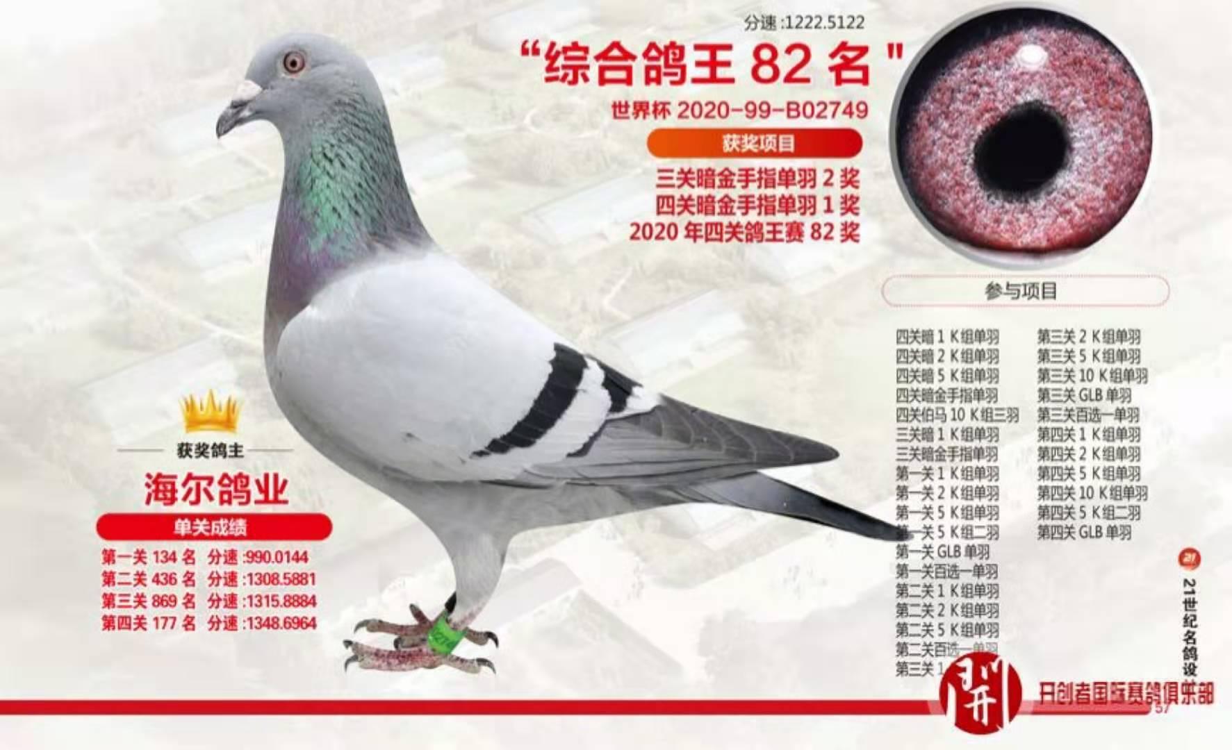 2020年北京开创四关鸽王82位