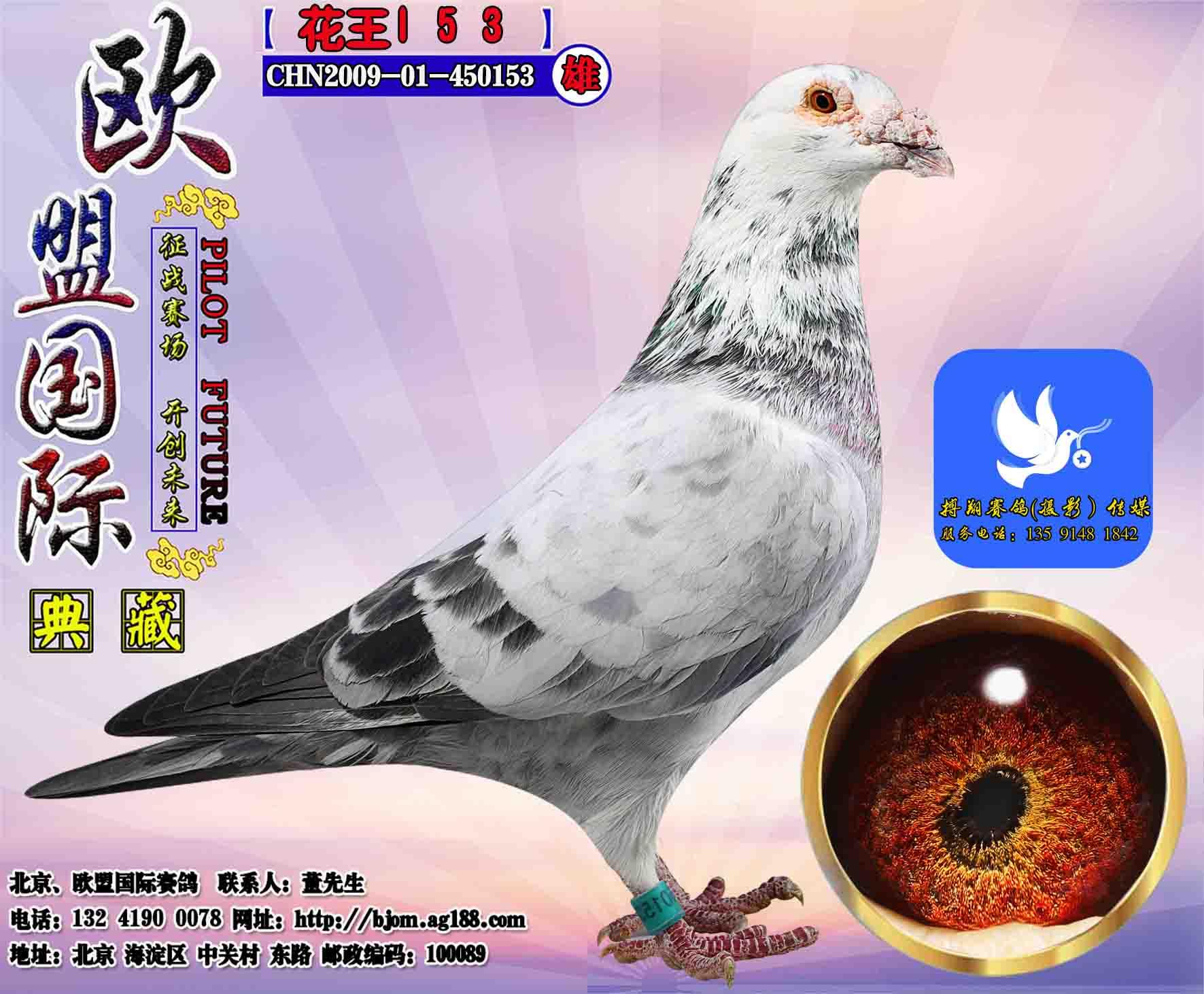 花王153