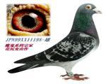 日本魔鬼198号