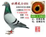 世搏武士686(非卖品)