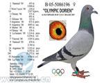 奥林匹克多琳