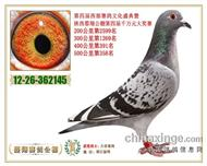 陕西�紫韫�棚 决赛358名(已出售)