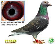 CHN2012-04-692220