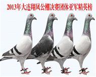 2013年大连翔凤公棚团体亚军