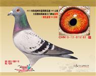 2013年蓝翔俱乐部冠军